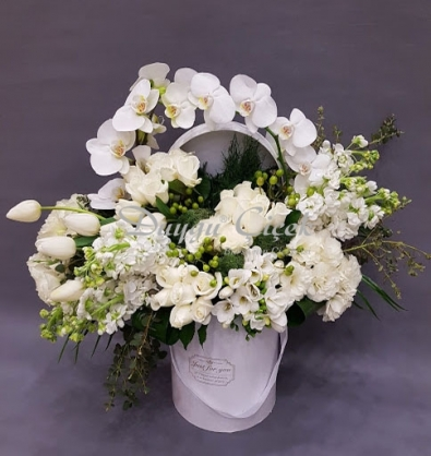 Orkideli Beyaz Büyü-Silindir Beyaz Kutuda